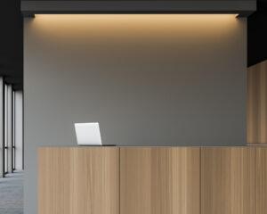 bagandbones-online-customiser-office-background
